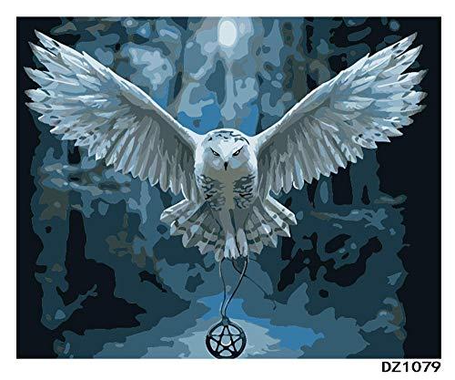 Pintar por Numeros Adultos Niños, DIY Pintura, Harry Potter Owl - 40x50cm(Sin Marco)