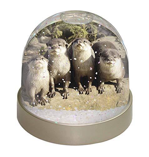 Advanta Cute Otter Schneekugel Snow Dome Geschenk, Mehrfarbig, 9,2x 9,2x 8cm