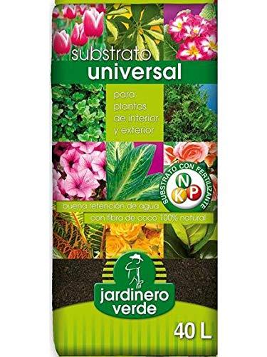 Universal M280889 - Substrato con Perlita 40 l 4-08002