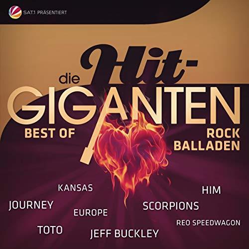 Die Hit Giganten-Rock Balladen [Vinyl LP]