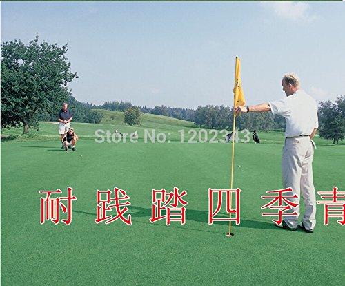 100pcs China-Qualitäts-Rasengrassamen grünen Pflanzensamen