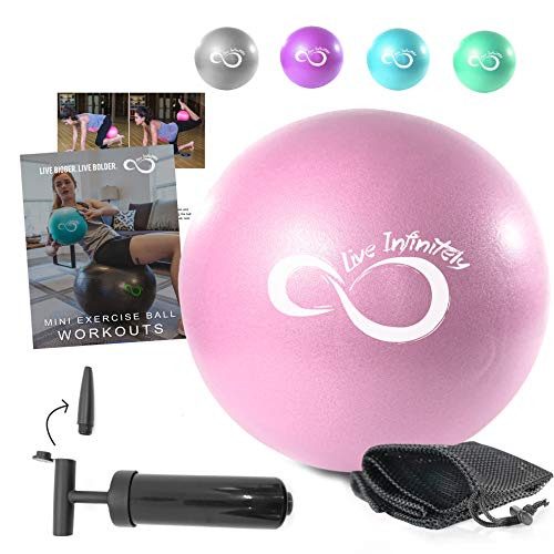 9 Inch Barre Pilates Ball & Hand Pump– Anti Burst Mini Ball & Digital Workout eBook Included For Yoga, Exercise, Balance & Stability Training – Comes With Mesh Carrying Bag (Rose, 9 Inch)