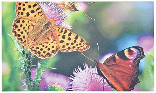 Esschert Design Türmatte Schmetterlinge aus Recyceltes Gummigranulat und Polyestervlies, 76,0 x 45,5 x 0,4 cm