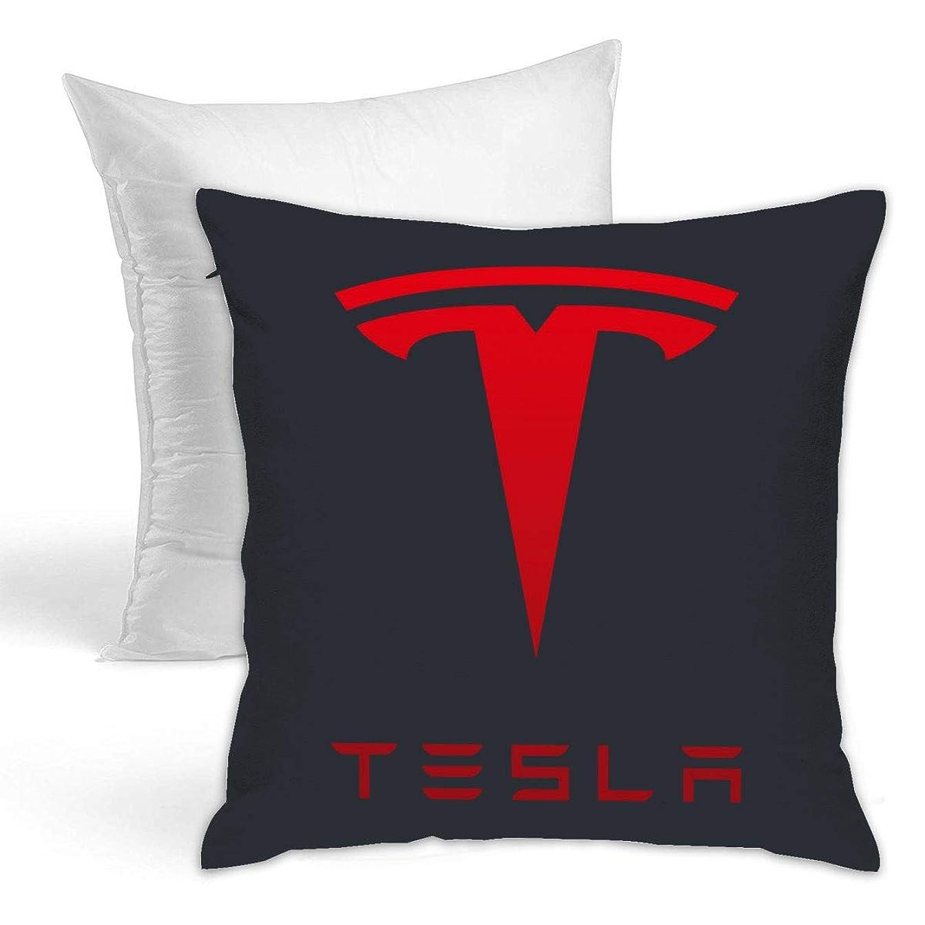 悲しむ卵唯物論Tesla クッション ソファ背当て 装飾枕カ 座布団 枕 車用品 ホーム 部屋 インテリア 飾り 抱き枕 1個