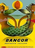 バンガー北アイルランド、ブリキサインヴィンテージ面白い生き物鉄の絵の金属板ノベルティ