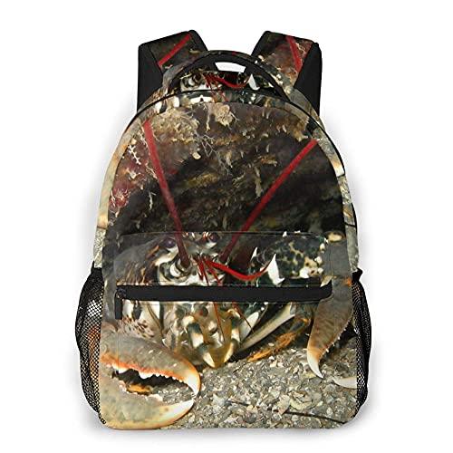 Mochila escolar Backpack Cave Lobster Bookbag Lightweight Laptop Bag for School Travel Outdoor Camping