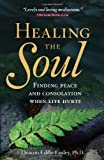 Healing the Soul: Finding Peace and Consolation When Life Hurts