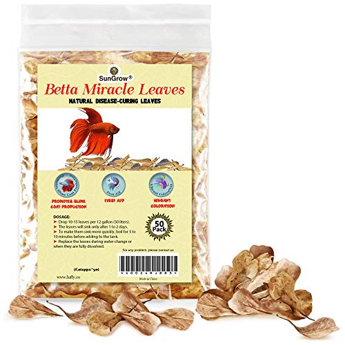 SunGrow Mini Catappa Indian Almond Leaves, Create Tropical Rainforest Environment for Betta & Gouramis, Beneficial Leaf Turns Water Black & Boosts Health and Breeding Chances, 50 Leaves