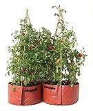Haxnicks Pot de Fleurs Jardinière pour tomates 55x35x35 cm Marron