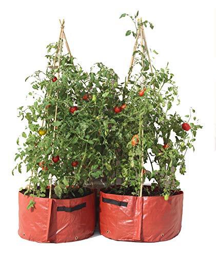 Haxnicks plantenzak voor groente Terraspot voor tomaten 55x35x35 cm bruin