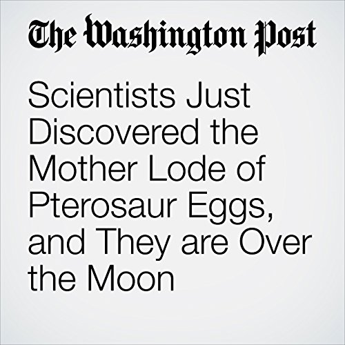 Scientists Just Discovered the Mother Lode of Pterosaur Eggs, and They are Over the Moon copertina