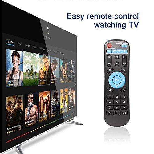 Haihuic Control Remoto de reemplazo de TV Box para T95Z Plus T95K Pro T95V Pro T95U Pro T95W Pro Q Box S912 IPTV Media Player