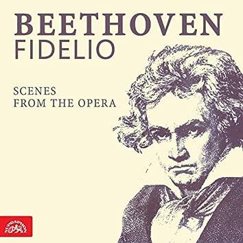 Beethoven: Fidelio. Scenes From The Opera