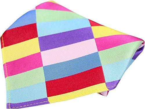 Modèle rectangulaire multicolore Mochoir en soie de Posh and Dandy