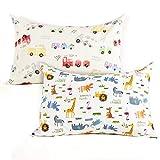 Kids Toddler Pillowcases-2 Pack Pillow Cover for Boys Girls Kids Bedding ,Animal Paradise/Car