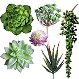 6 Pcs Artificial Succulents Different Kinds Assorted Faux Succulent Plants Unpotted Fake Succulents Artificial Hanging Plants String of Pearls Plant for Wedding Floral Home Decor