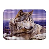 MEJX Tappeto da Bagno Decorativo,Altopiano Animale altopiano Grigio e Bianco Wolf Lying on The Stone,Lavabile Personalizzato,75 x 45 cm