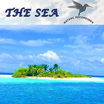 The Sea (Nature Recordings)
