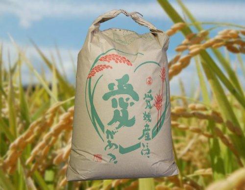 愛媛県産 白米 ヒノヒカリ 30kg