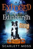 Exposed in Edinburgh: A Travel Cozy Mystery (The House Sitters Cozy Mysteries Book 1)