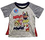 Nickelodeon Toddler Little Boys Paw Patrol Tee Shirt Detachable Cape (2T) Grey