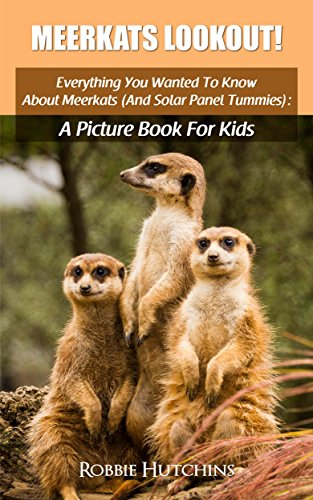 Meerkats Lookout!: Everything You Wanted To Know About Meerkats (And Solar Panel Tummies): A Picture Book For Kids (The Everything You Wanted to Know About ... Picture Books for Kids 5) (English Edition)