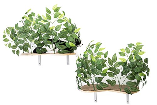 On2Pets Cat Furniture Canopy Shelves for Climbing, Playing and Relaxing, Set of 2, White, Medium (CN001)