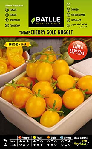 Oferta de Semillas Hortícolas - Tomate amarillo Golden Nugget - Batlle