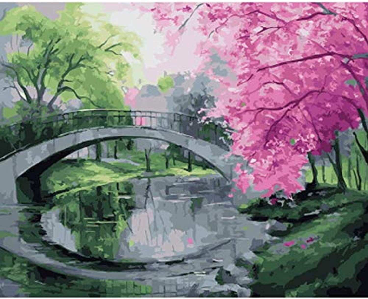 CAYYOU DIY oil painting by numbers paint by number for home decor oil picture painting bridge, Framed, 50x60cm