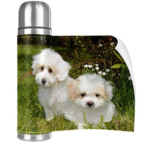 Pet Dogs White Garden Stainless Steel Mug Vacuum Insulated Tumbler Travel Tumbler Thermos Stainless with Lid Best Gift for Children 16.9OZ