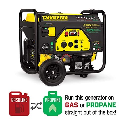 Champion Power Equipment 76533 4750/3800-Watt Dual Fuel RV Ready Portable Generator with Electric Start 4