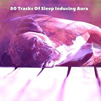80 Tracks Of Sleep Inducing Aura