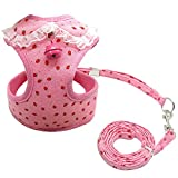 xxs puppy harness - Didog Adjustable Pet Mesh Vest Harness and Leash Set with Cute Bell for Puppy Small Medium Dogs and Cats