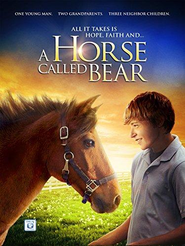 A Horse Called B
