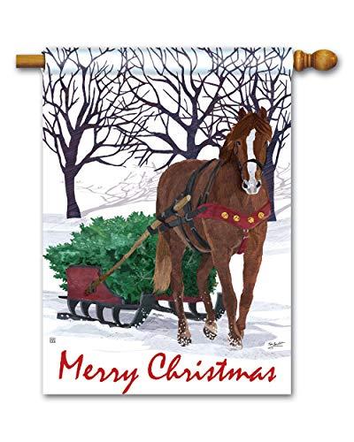 BreezeArt Studio M Horse Drawn Sled Winter Christmas Standard House Flag Banner - Premium Quality, 28 x 40 Inches