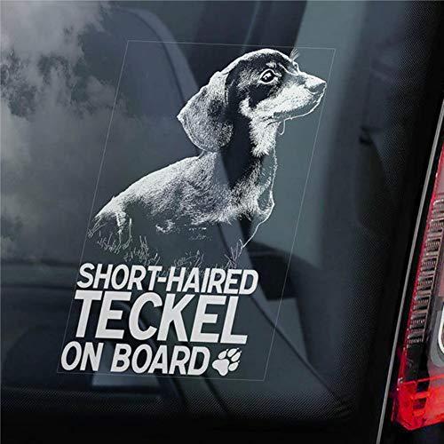 DONL9BAUER Adhesivo de pelo corto Teckel a bordo para ventana de coche,...