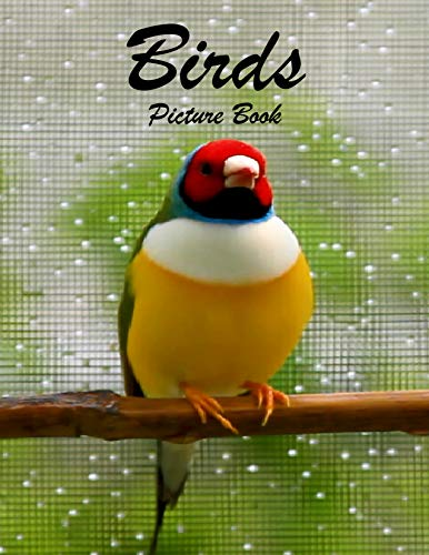 Birds Photography Photo Book: A picture book Gift for Human (Beautifull Birds Photo Book) V6