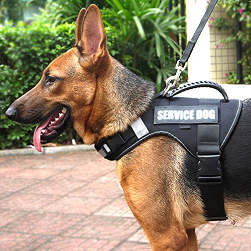 No Pull Service Dog Vest Harness with Soft Handle and Reflective Stripe for Service Dogs, Adjustable Padded Vest with Removable Reflective Patches for Small Medium Large Dogs(XL)