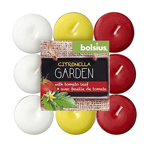 Bolsius Theelichten Citroen/Tomaten