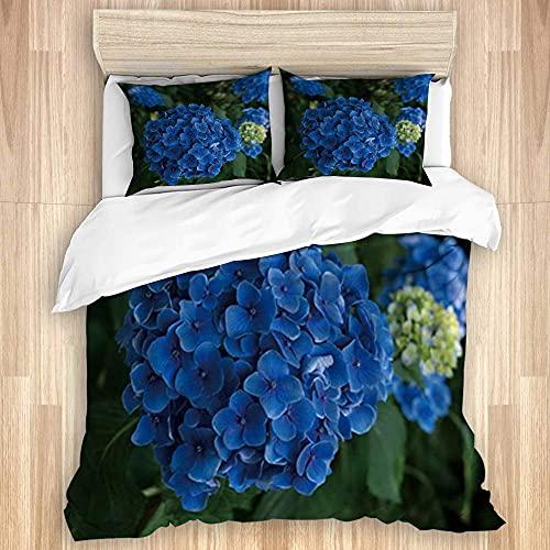ATZTD - Set di biancheria da letto con copripiumino e 2 federe per letto super king size 260 x 220 cm