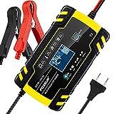 yotame Chargeur Batterie Voiture Moto 12V/24V 8A, Chargeur de Batterie Intelligent Portable LCD Écran avec Protections Multiples Type de Réparation pour Batterie de Voiture/Moto/Tondeuse à Gazon etc