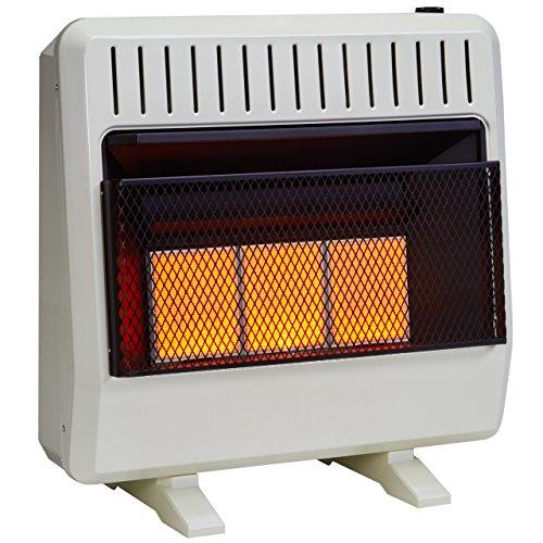 Avenger FDT3IR Dual Fuel Ventless Infrared Heater,...