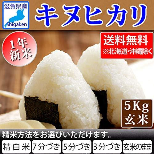 令和1年産 滋賀県産 キヌヒカリ 5kg【精米方法選べます】 (5分搗き)