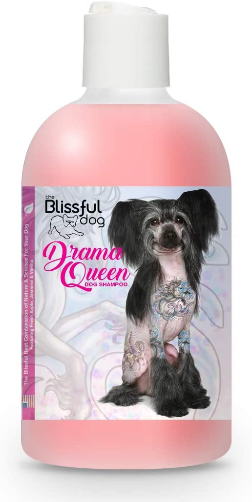 The Blissful Special price for a limited time Dog shop Queen Drama Shampoo
