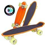 8bayfa Cruiser Skateboard 22' Pouces, givré Simple Rocker 4 Roues Conseil Roue ABS Poisson Flash Planche à roulettes Universelle (Color : Yellow)