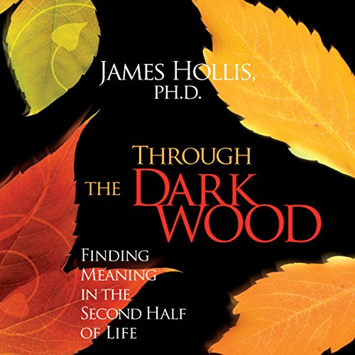 Through the Dark Wood audiobook cover art