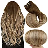 Full Shine Clip in Hair Extensions Human Hair 14 Inch 100 Gram Real Clip in Hair Extensions Double Weft 10Pcs Balayage Chestnut Brown 6 Fading to 10 Golden Brown and 24 Blonde