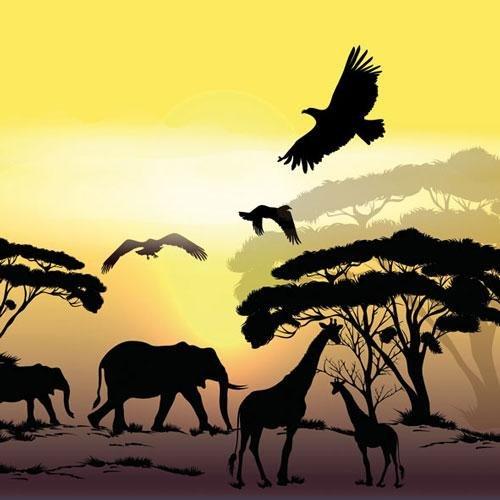 Ambiente Serviette Motiv : Afrika Safari 20 Servietten pro Packung (Haushaltswaren)