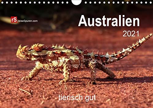 Australien tierisch gut 2021 (Wandkalender 2021 DIN A4 quer)