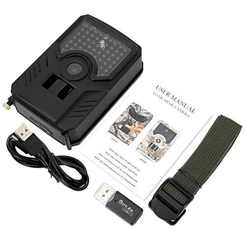 Bnineteenteam Hinterkamera, 1080P 12MP wasserdichte Jagdkamera mit Nachtsicht für die Überwachung der Wildtiere von zu Hause aus